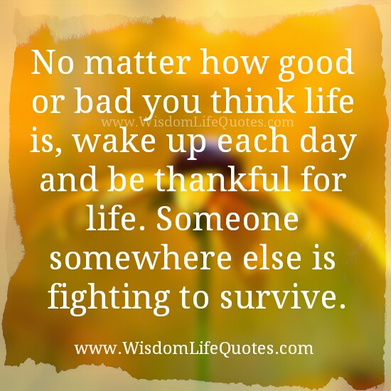 Wake up each day & be Thankful for life